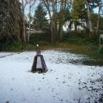 Snow gone
